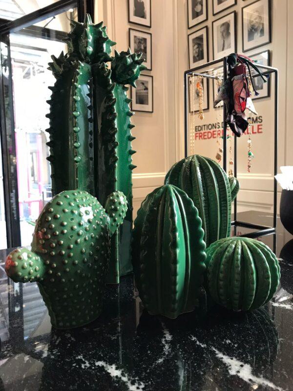 Sicilian's Cactus